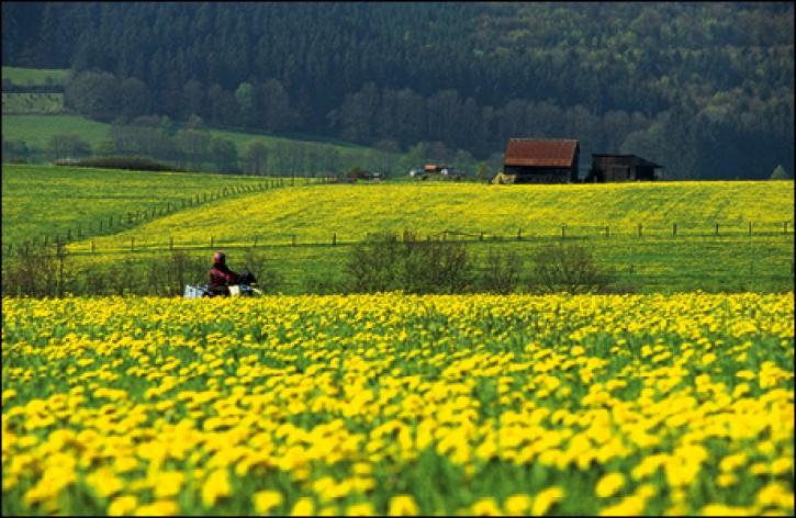 Frühling in Deutschland - Acht Top-Touren zum Saison-Start ZIP